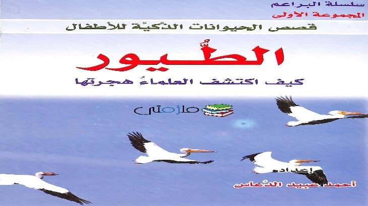 قصة الطيور كيف اكتشف العلماء هجرتها للاطفال - WwW.Mlzamty