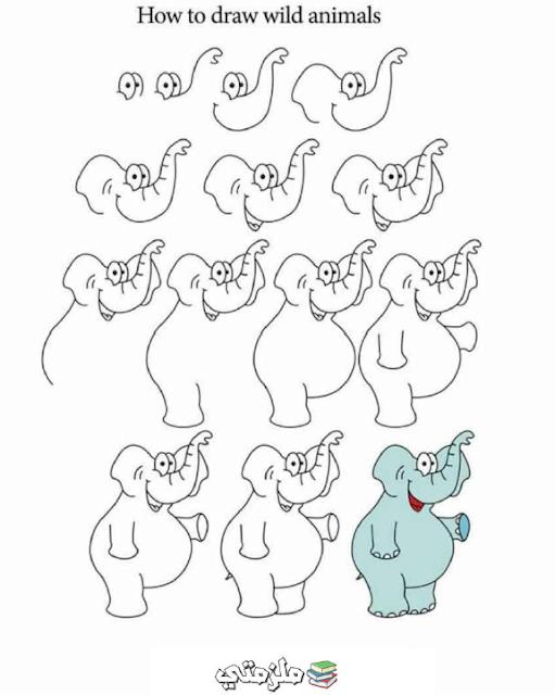 تعليم رسم الفيل
