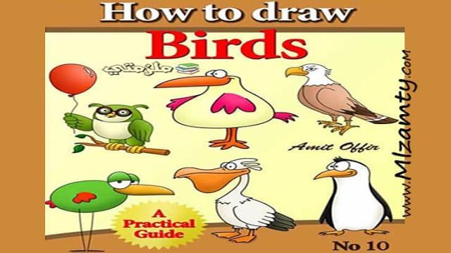 كيفية تعلم رسم الطيور للاطفال