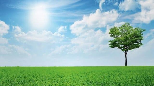 موضوع تعبير عن البيئة والمحافظة عليها ملزمتي