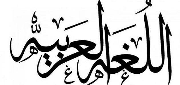 أهمية اللغة العربية في فهم القرآن والسنة