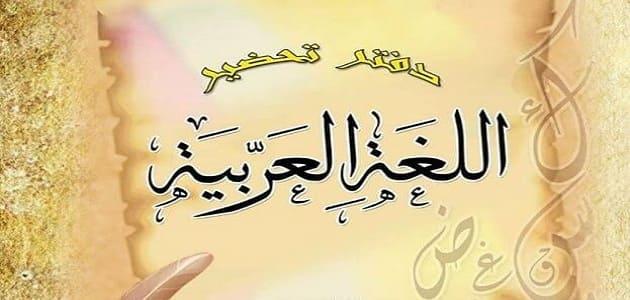 دفتر تحضير الدروس لغة عربية doc جاهزللطباعة