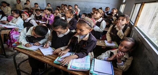 بحث عن تطوير التعليم في مصر