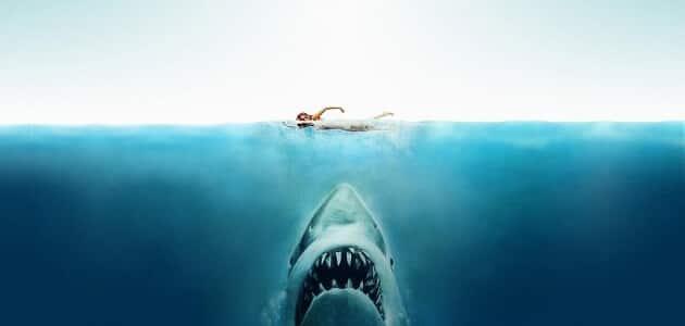 قصة هجوم القرش المفترس مشوقة جدًا