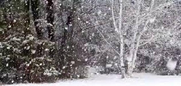 كيف تتساقط الثلوج