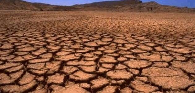 ما مظاهر تدهور التربة