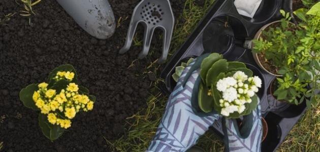 ما مكونات التربة الزراعية