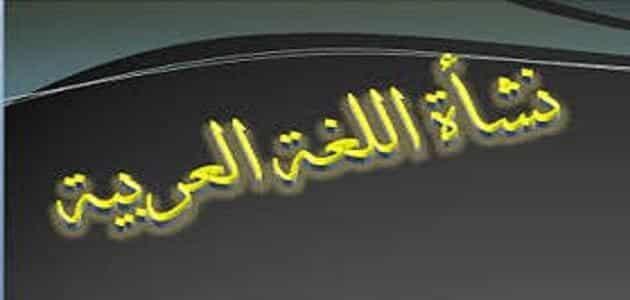 تعريف اللغة العربية وخصائصها
