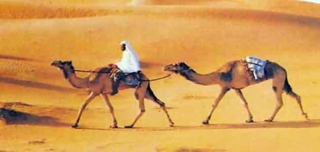 صفات العرب ومزاياهم