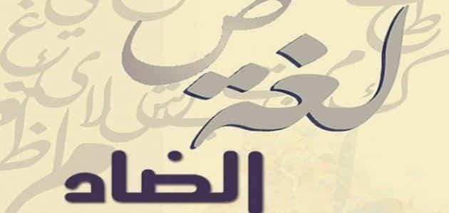 لماذا سميت لغتنا العربية بلغة الضاد