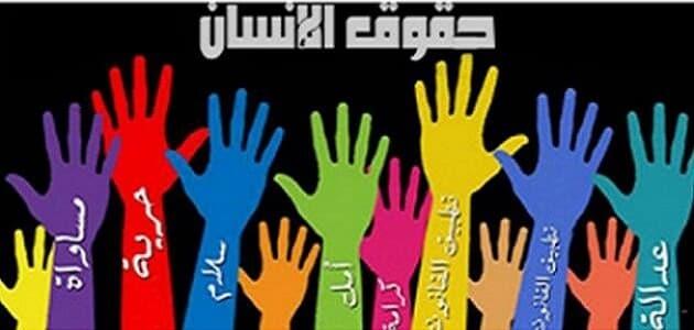 آليات حماية حقوق الإنسان في الوطن العربي