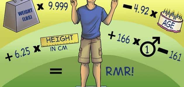 كيفية حساب الكالوري التي يحتاجها الجسم يوميا
