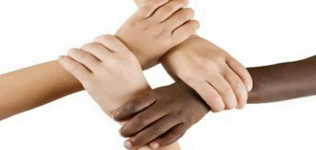 ما هو تعريف العنصرية