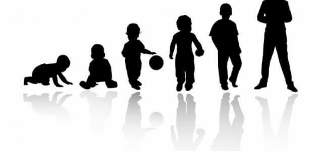 مراحل النمو العقلي عند فرويد