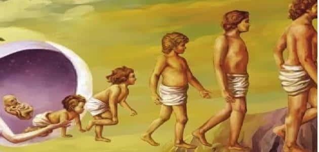 ما هي المراحل العمرية التي يمر بها الانسان