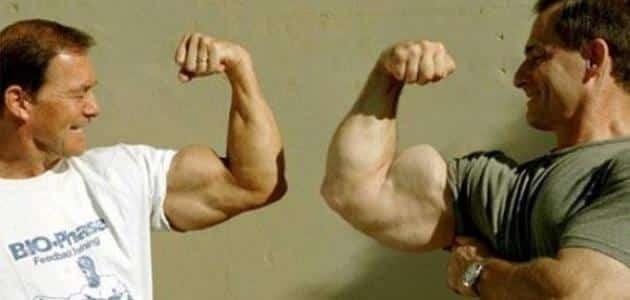 بحث عن أقوى عضلة في جسم الإنسان