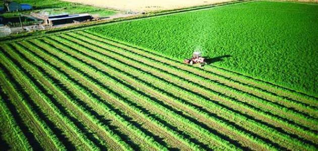 بحث عن التكنولوجيا المستخدمة في الزراعة