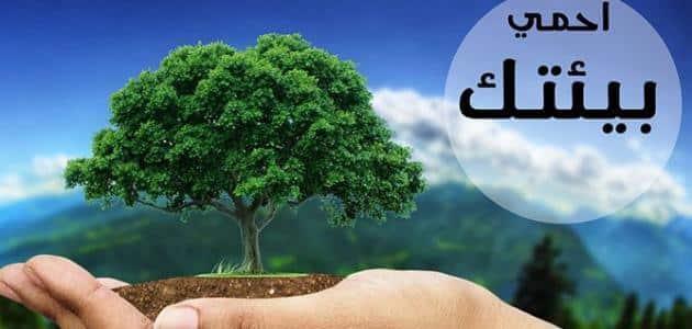 بحث عن الحفاظ على الاتزان البيئي