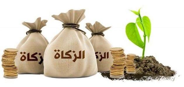 بحث عن مصارف زكاة المال في مصر