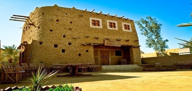 بحث كامل عن متحف سيوة