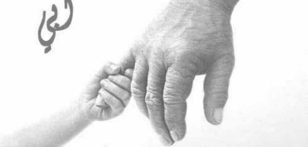 موضوع تعبير عن قدوتي في الحياة ابي