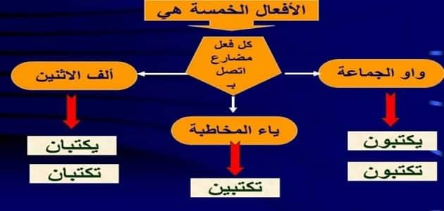 شرح الافعال الخمسة وانواعها