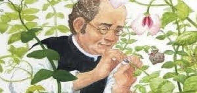 مؤسس علم الوراثة في العالم