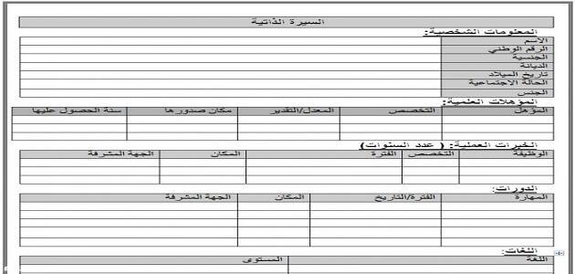نموذج سيرة ذاتية فارغ جاهز للتعبئة pdf