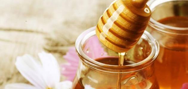 بحث علمي عن العسل