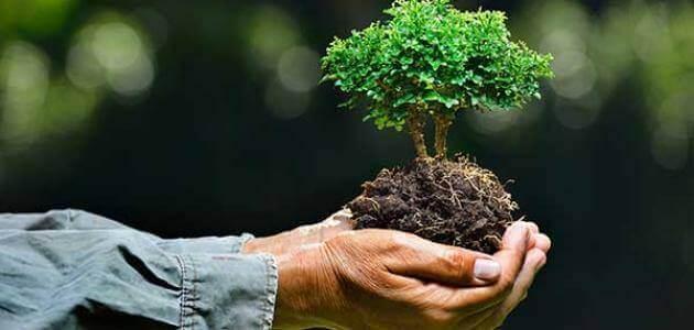 مقدمة البحث عن البيئة للصف الثاني الإعدادي