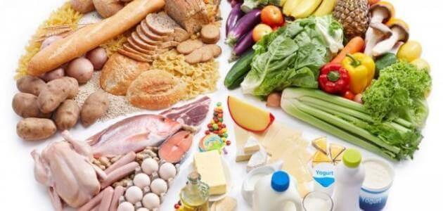 مقدمة عن التغذية وصحة الغذاء