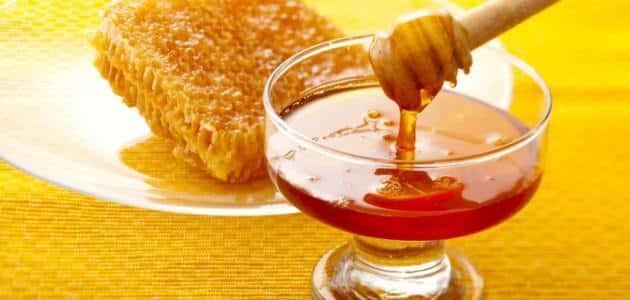 مقدمة عن العسل وفوائده