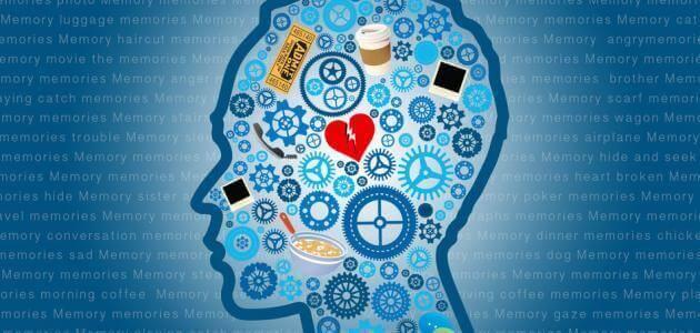 مقدمة عن المعرفة في علم النفس