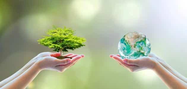 أثر التلوث على صحة الإنسان