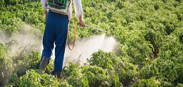 أثر تلوث البيئة على الزراعة