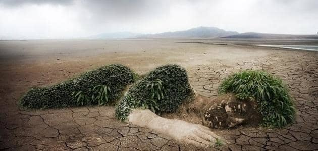 أسباب تلوث التربة