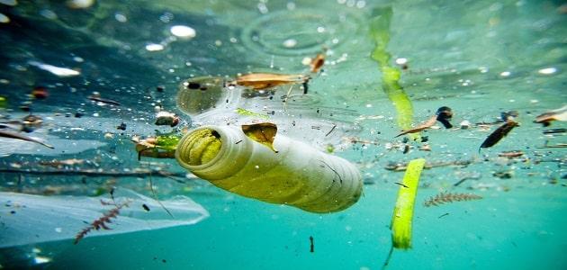 أضرار تلوث الماء