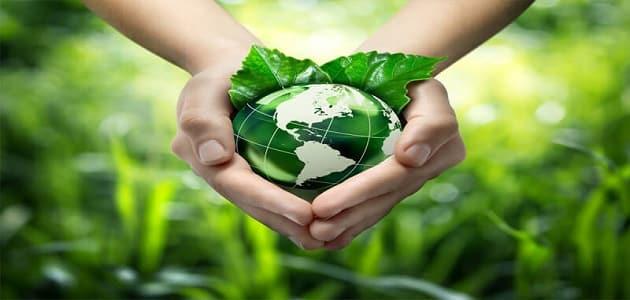 افكار علميه مقترحه لحل مشكلات التلوث البيئي