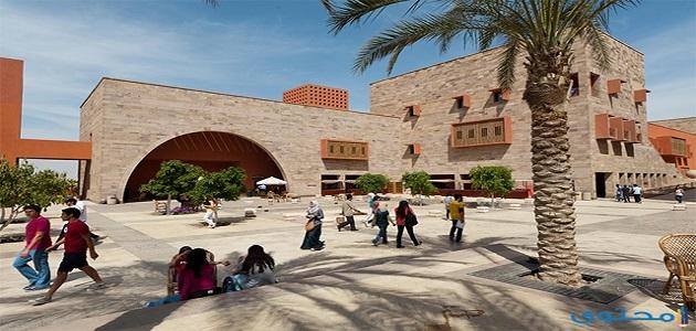 شروط القبول بالجامعة الأمريكية في مصر