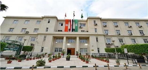 كلية الاقتصاد والعلوم السياسية جامعة القاهرة