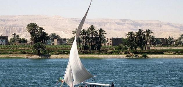 مخاطر تلوث نهر النيل والآثار المترتبة عليه