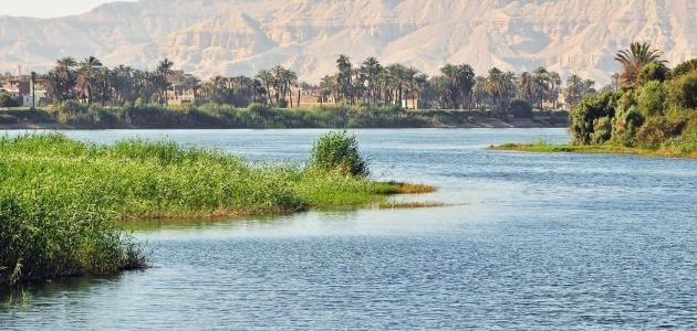 موضوع تعبير عن النيل والوحدة الوطنية