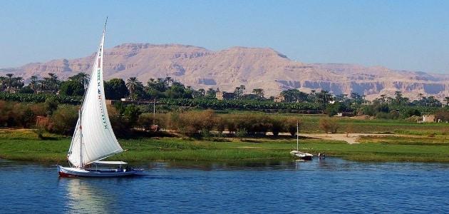 موضوع تعبير عن نهر النيل بالعناصر والاستشهادات