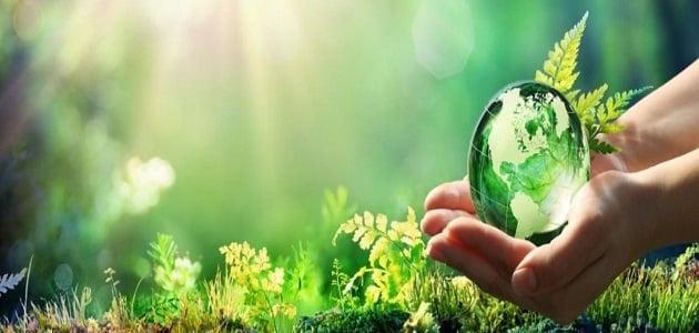 موضوع عن البيئة وكيفية المحافظة عليها