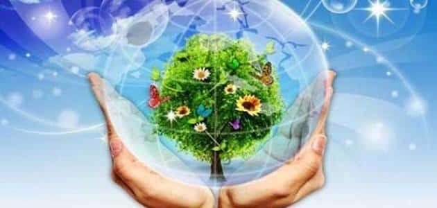 نصائح للحفاظ على البيئة من التلوث