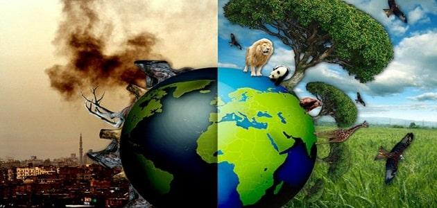 أخطار التلوث البيئي وسبل مكافحتها