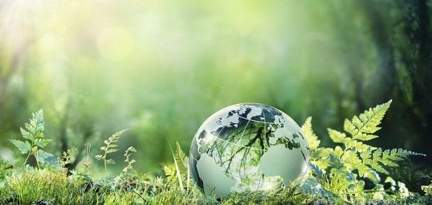 ما الوسائل المتبعة للحد من مشكلة التلوث البيئي
