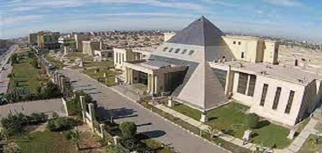 معلومات عن جامعة النهضة الخاصة ببني سويف