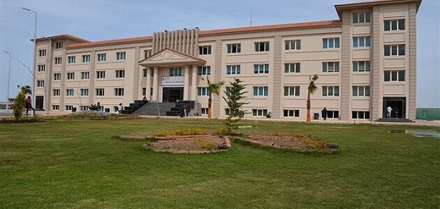 معلومات عن جامعة حورس بدمياط الجديدة
