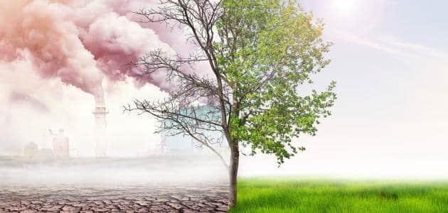 مفهوم التلوث البيئي وصوره واسبابه